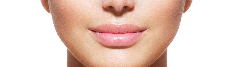 Docteur Claude Le Louarn zone anatomique la bouche