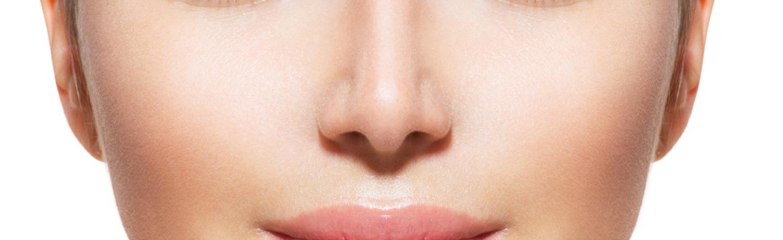 Docteur cClaude Le Louarn zone anatomique le nez