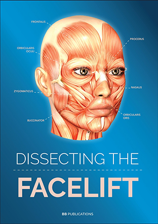 claude-le-louarn-dissecting-the-facelift-opt